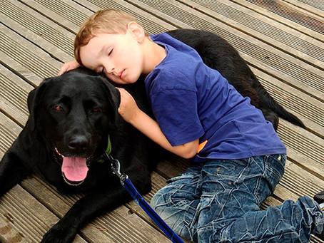 Razas de perros ideales para niños pequeños