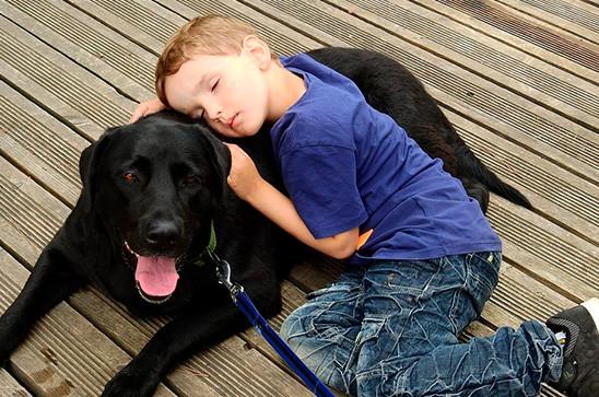 Niño con perro de raza ideal para niños
