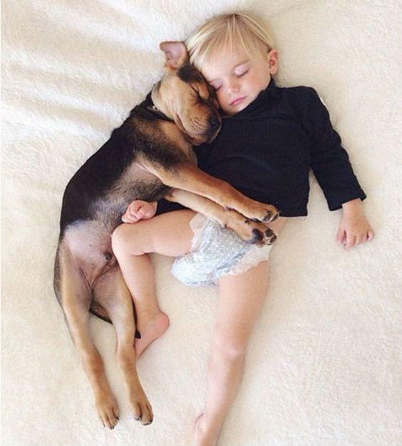 Por que dormir con tu perro