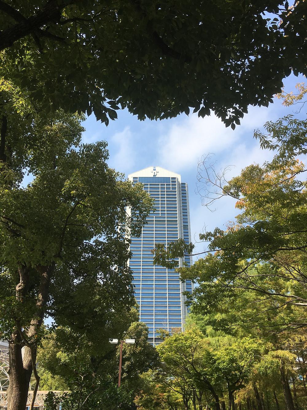 東遊園地から見た神戸市庁舎