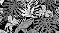 pattern_tropical_flowers_130382_3840x216