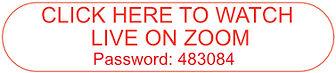 Zoom Button Red Rev 8-23.jpg
