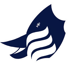 TBD Logo.jpg