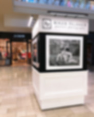 chesnut hill mall 2019_web_edited.jpg