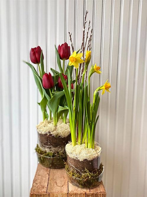 Simply Spring!