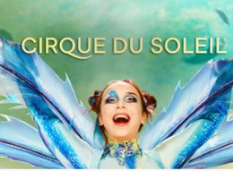 Circo del Sol