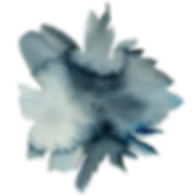 flower-4 (3).png