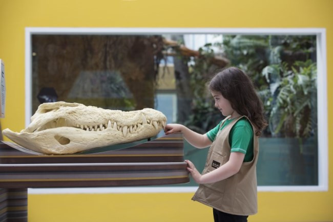 Zoorassic, Dublin Zoo