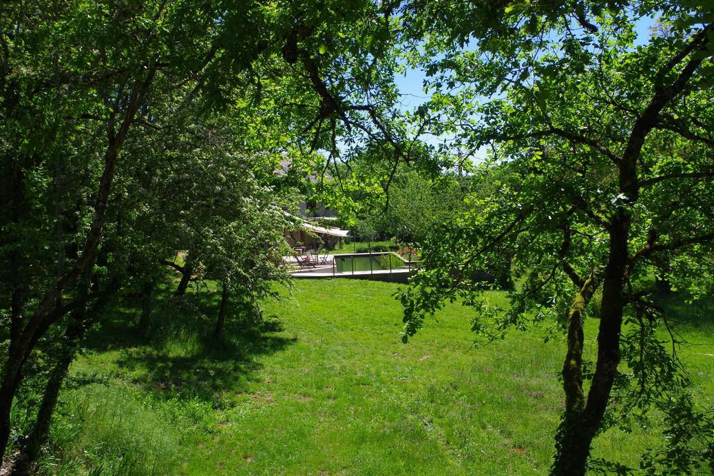 Vue de la terrasse du gîte sur la piscine