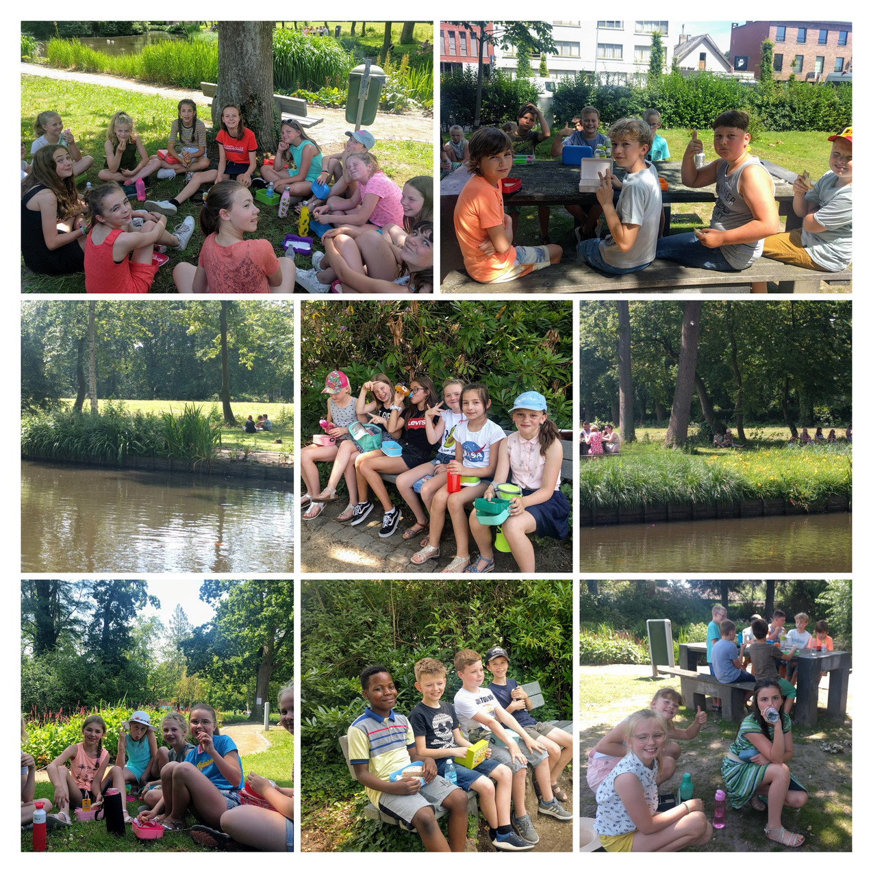 IMG_20190624_121154-COLLAGE