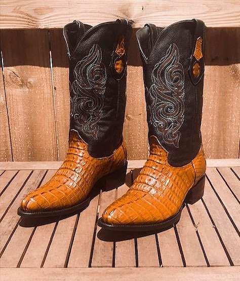 """""""The Trail Boss"""" in Caiman Tail (Honey)"""