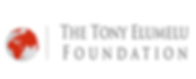 Tony-Elumelu-Foundation.png