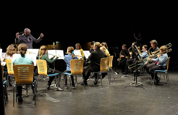 Northern Rivers Youth Orchestra Camp 201