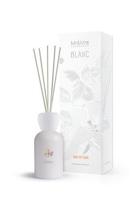 Blanc - Mint of Cuba