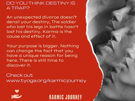 Karma & Destiny