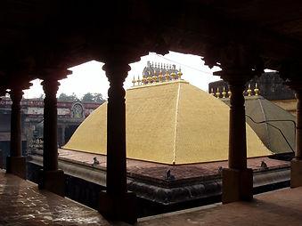 Chidambaram_temple_tyoga.jpeg