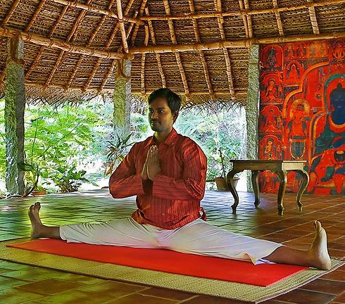 Siddhar_Yoga_Master_1_edited.jpg