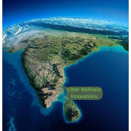 Citter_wellness_innovations_map.1 png.jpeg