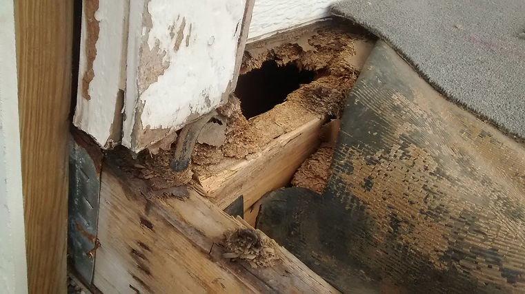 Construction defects on a home that needs repair.