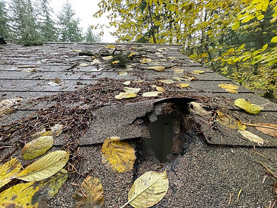 A roof in need of roof repair by Marcano Roofing in Salem Oregon