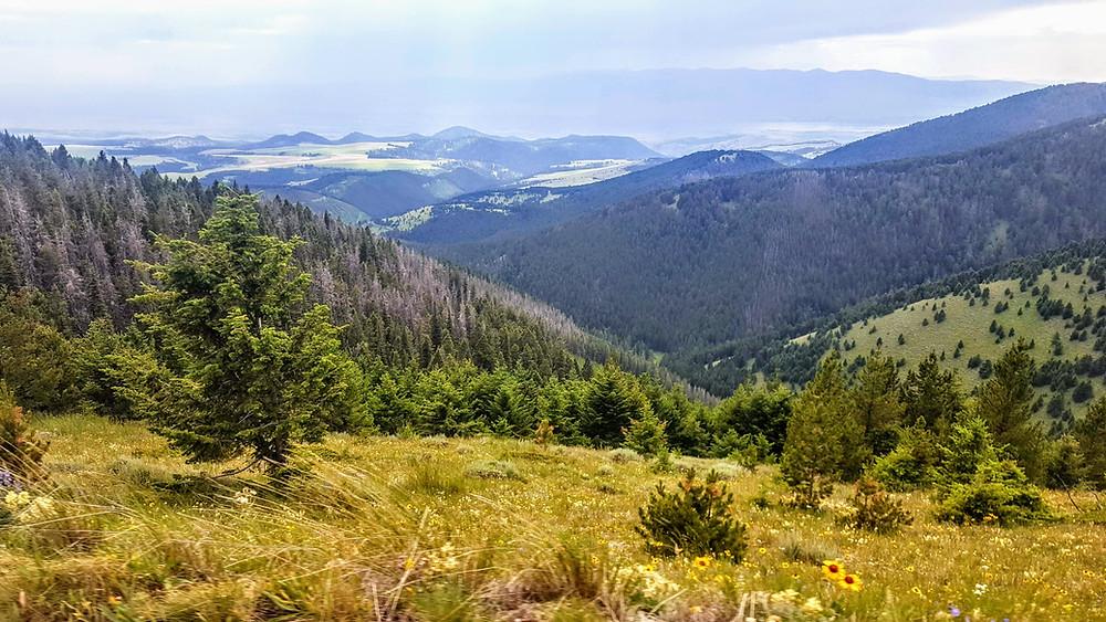 Montana Hiking Trails