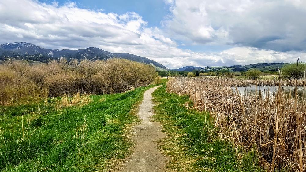 Walking path in Bozeman, Montana.