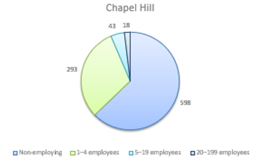 Accounting for Business Employment in Chapel Hill