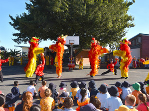 Harmony Week celebrations