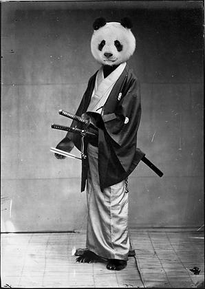 Unknown Samurai