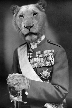 General Panthera