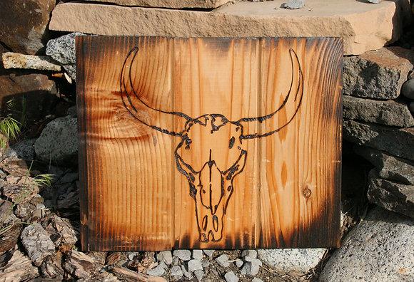 Cattle Skull