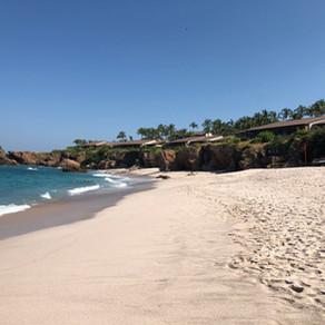 Activity Abounds in Punta Mita
