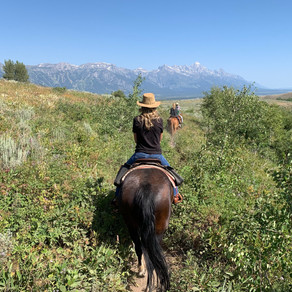 """The """"Last Real Mountain Town"""": Jackson Hole, Wyoming"""
