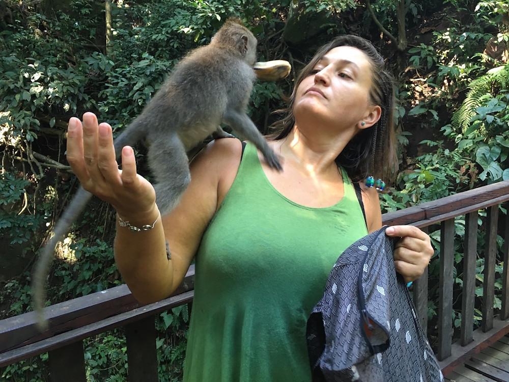Kutsal Maymun Ormanı'nda tepeme çıkmakta olan maymun