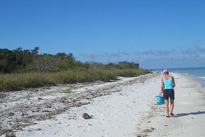 Beach Walk on the Gulf