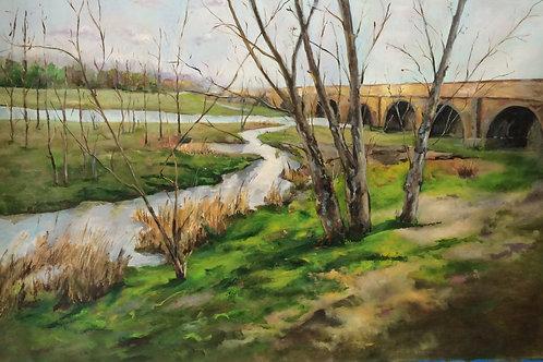 Antonio Sastre - Puente romano Salamanca
