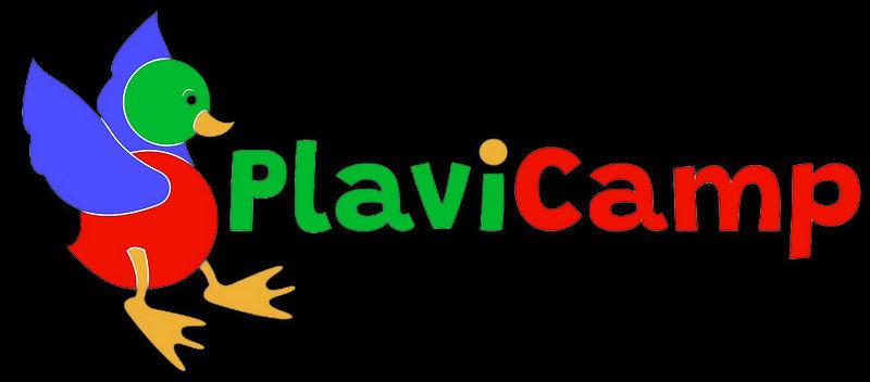 LOGO PLAVICAMP SENZA SFONDO (2).jpeg