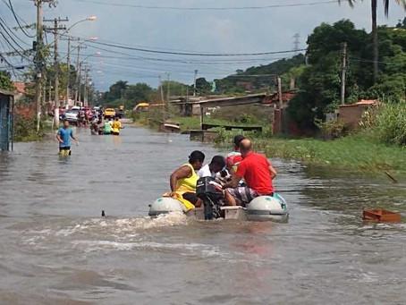 Construindo caminhos para a sustentabilidade, por Lourdes Brazil