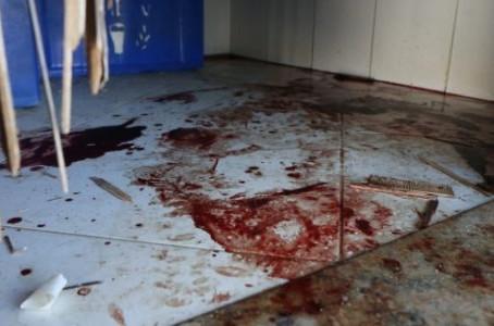 Porto banhado de sangue, por Mário Lima Jr.