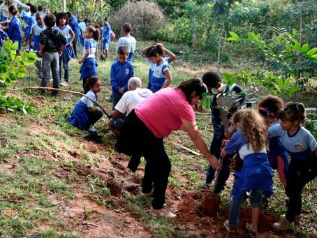 Crianças plantam árvores na APA durante Dia Mundial do Meio Ambiente