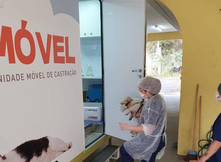 Castramóvel realiza 100 cirurgias em cães e gatos no Caramujo