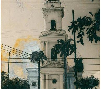Morre uma palmeira histórica, por Rui A. Fernandes