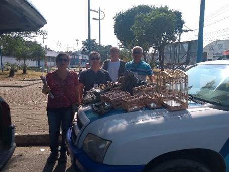 Meio Ambiente faz ação de fiscalização em feiras de SG