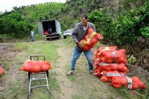 Agricultura Familiar em Itaboraí: prazo para cadastro de produtores termina amanhã, 22