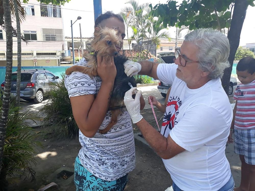 Na última campanha, o município imunizou mais de 136 mil animais de estimação/Foto: Divulgação
