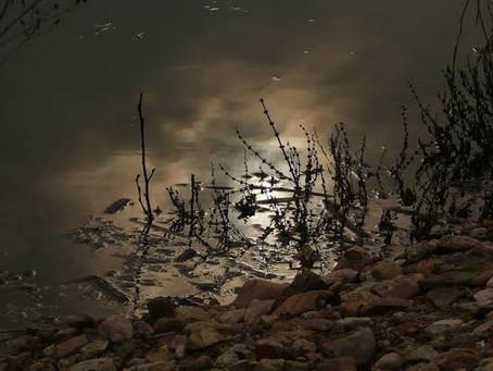 A trolagem noturna do Rio Madeira, por Erick Bernardes