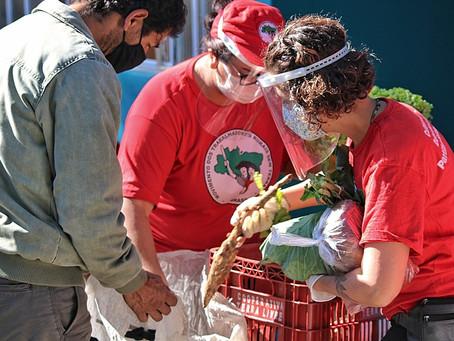 MST já doou mais de 5 mil toneladas de alimentos na pandemia