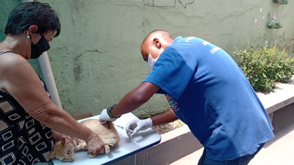 Vários polos estão preparados para a vacinação/Foto: Divulgação