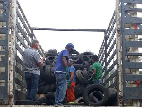 Poder público garante descarte correto de pneus em SG