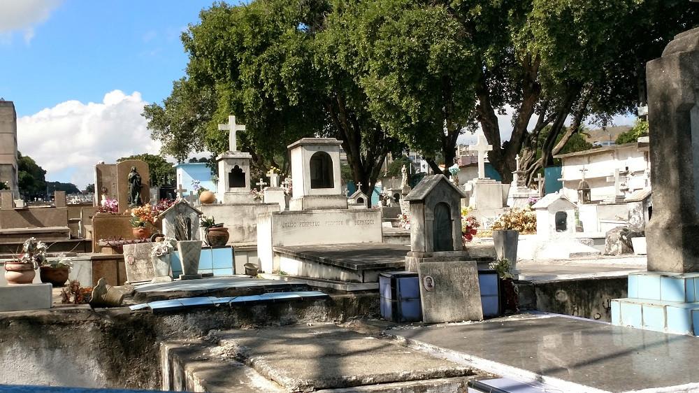 Será para os quatro cemitérios do município/Foto: Divulgação